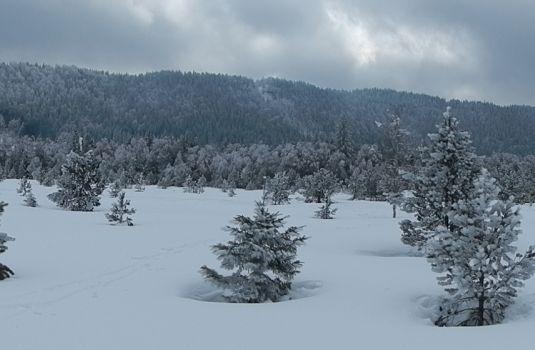 Photo - Ski de fond 2018 ; c'est reconstruit !