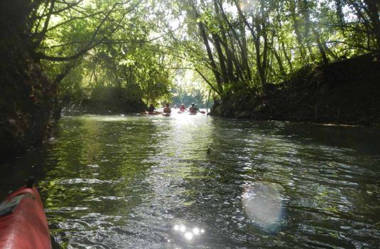 Photo - Balade sur la Marne